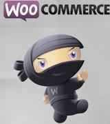 کسب و کار اینترنتی با ووکامرس